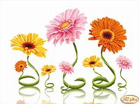 Схема для вышивки бисером Цветные спиральки