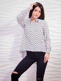 Рубашки женские, блузы, туники