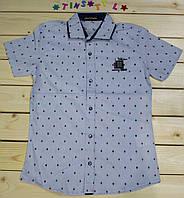 Стильная рубашка с коротким рукавом  для мальчика рост 134-170