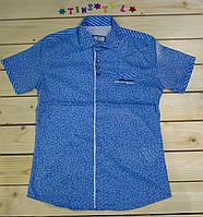Стильная нарядная  рубашка ,шведка  для мальчика рост 134-170