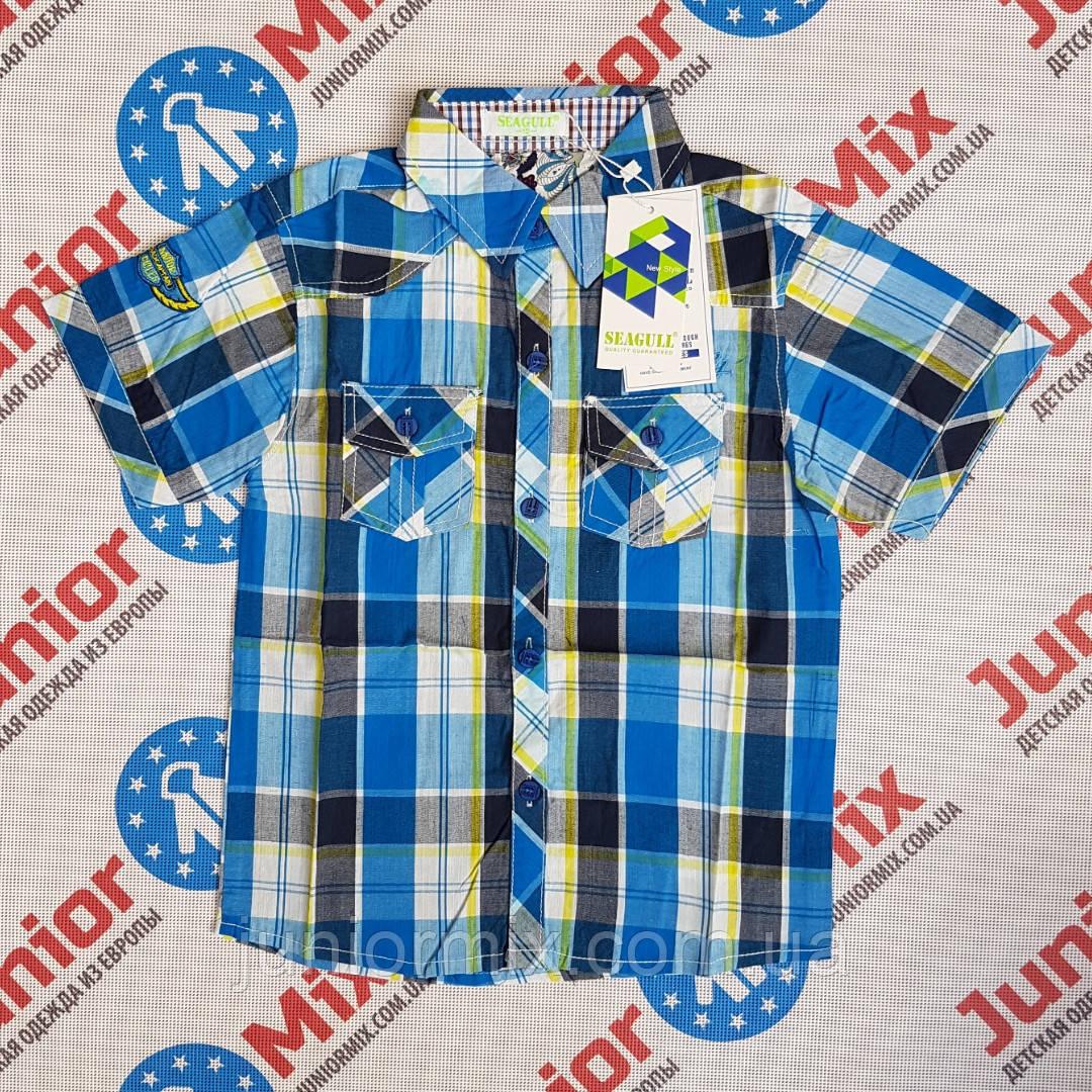 Подростковая рубашка на мальчика в клеточку SEAGULL