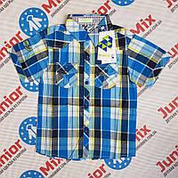Подростковая рубашка на мальчика в клеточку SEAGULL, фото 1