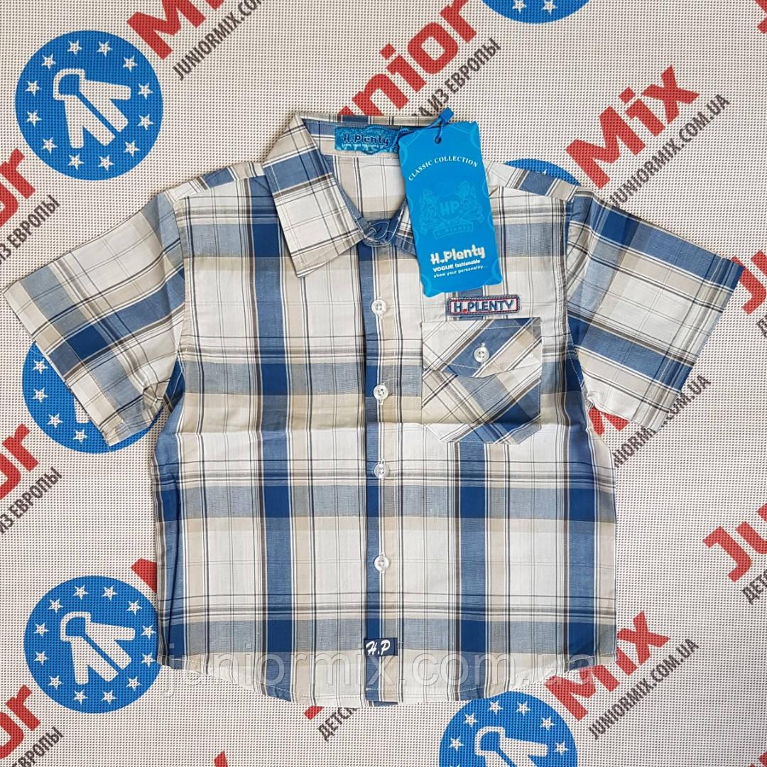Детская рубашка в клеточку на мальчика  H. Plenty
