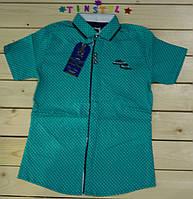 Яркая рубашка с коротким  рукавом ,шведка  для мальчика рост 134-170