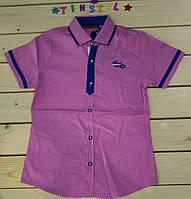 Стильная рубашка ,шведка  для мальчика рост 110