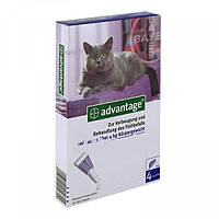 Капли Bayer Advantage (капли от блох) для кошек 4-8кг