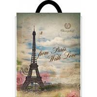 Пакет прорезная ручка 20*30 Париж 100шт/уп