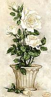 Схема для вышивки бисером Белые розы