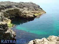 Семинар по морской подводной охоте в Крыму