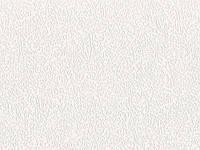 Обои виниловые на флизелиновой основе 2564-01
