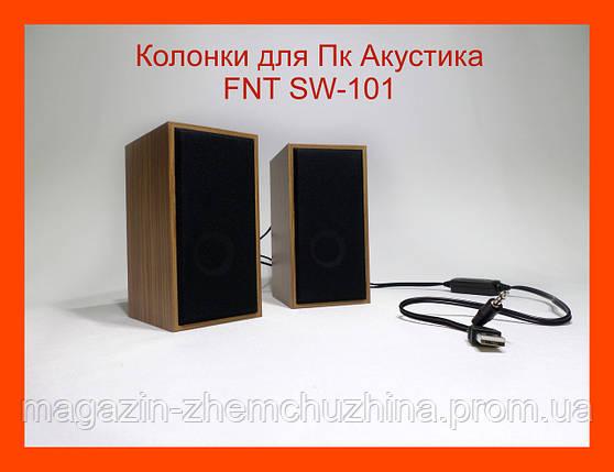 Колонки для Пк Акустика FNT SW-101 2.0, фото 2