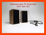 Колонки для Пк Акустика FNT SW-101 2.0