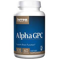 Jarrow Formulas, Альфа GPC300, 300 мг, 60 капсул, Вегетарианская пищевая добавка, БАД