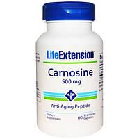 Life Extension, Карнозин, 500 мг, 60 вегетарианских таблеток