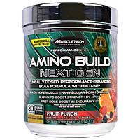 Muscletech, Серия Performance, Amino Build, фруктовый пунш, 0,58 фунта (261 г)