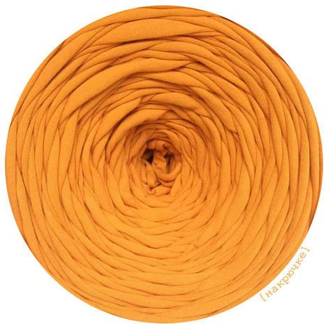 Ленточная пряжа Арт Спейс, цвет горчица