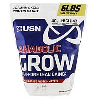 USN, Анаболический рост, ванильное мороженное, 6 фунтов (2,73 кг)