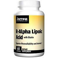 Jarrow Formulas, R-Альфа-липоевая кислота, биотин, 60 капсул