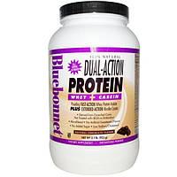 Bluebonnet Nutrition, Протеин двойного действия, сывороточный протеин и казеин, натуральный шоколадный вкус, 2.1 фунтов (952 г)