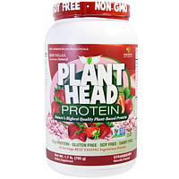 Genceutic Naturals, Белок из головок растений, клубника, 1,7 фунта (780 г)