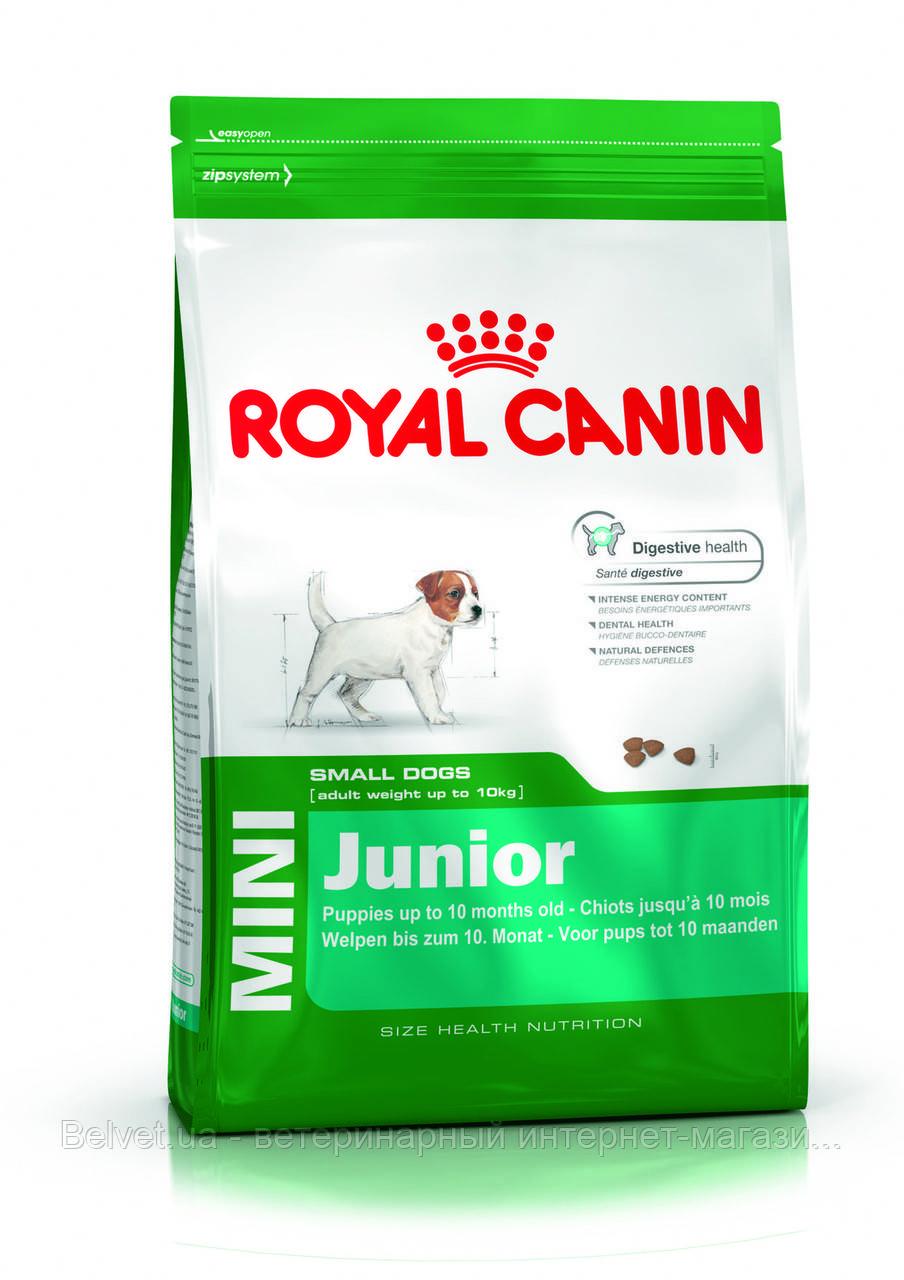 Royal Canin MINI JUNIOR (МИНИ ЮНИОРЫ мелких пород) 4 кг, корм для щенков от 2-10 месяцев