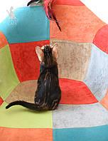 Девочка 1. Бенгальская кошечка питомника Royal Cats