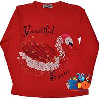 """Батник с ярким принтом  """"Swan"""" , трикотаж , для девочек от 5-8 лет (4 ед. в уп.)"""