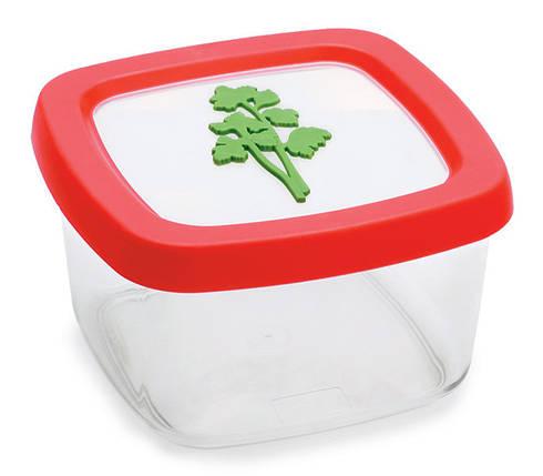 Контейнер для продуктов, 0,5 л, зелень, фото 2
