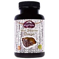 Dragon Herbs, Дикая сибирская чага, 350мг, 100капсул