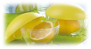 Контейнер для лимона, фото 2
