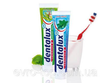 Зубная паста Dentalux Krauter Fresh 125 мл, фото 2