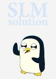 Выгрузка товаров SLM Solution