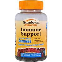 Sundown Naturals, Поддержка иммунитета, вкус клюквы-малины и кислой вишни, 60 желатиновых конфет