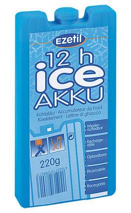 Аккумулятор холода 220, Ice Akku, фото 2