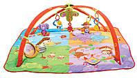 Развивающий коврик с дугами 5 в 1 Разноцветное сафари, Tiny Love, арт. 1201806830