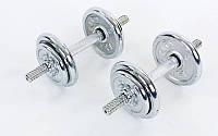 Гантели разборные (2шт) хромированные 10кг TA-0010-10(2) (2 грифа l-33см, хром. блины)
