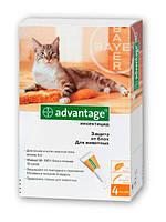 Капли Адвантейдж 40 для кошек до 4 кг  (Bayer)