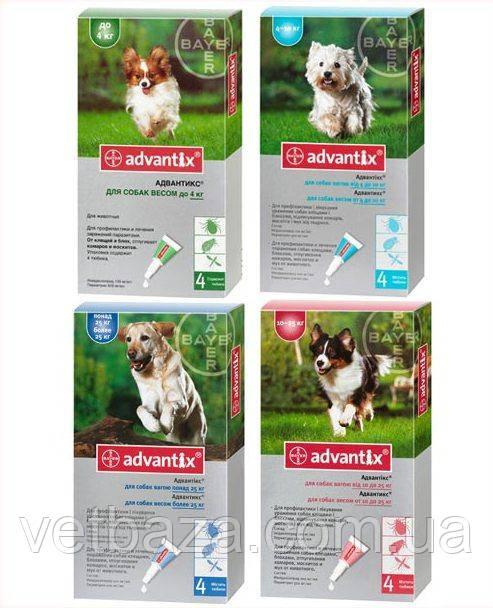Капли Адвантикс для собак до 4кг 0,4 1 пипетка Bayer