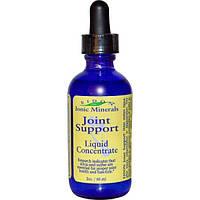 Eidon Mineral Supplements, Поддержка суставов, жидкий концентрат, 2 унции (60 мл)