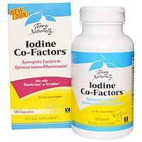 EuroPharma, Terry Naturally, Terry Naturally, Iodine Co-Factors, кофакторы йода, 120 капсул