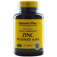 Natures Plus, Пиколинат цинка с витамином B-6, 120 таблеток