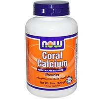 Now Foods, Порошок кораллового кальция, 6 унций (170 г)