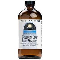 Source Naturals, Коллоидные микроэлементы для жизни, 4 жидких унции (118.28 мл)