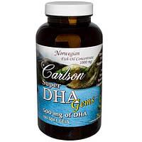 Carlson Labs, Рыбий жир Сокровища супер-DHA, 500 мг, 180 мягких капсул