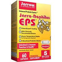 Jarrow Formulas, Jarrow-Dophilus EPS, 60 овощных капсул