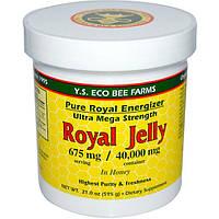 Y.S. Eco Bee Farms, Мед с Маточным Молочком, 675 мг, 21.0 унций (595 г)
