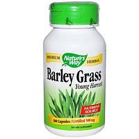 Natures Way, Зеленые побеги ячменя, молодой урожай, 500 мг, 100 капсул
