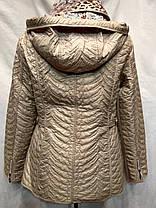"Куртка весна -осень фирма ""NEW O MADAM"" (модель 558), фото 2"