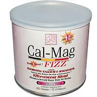 Baywood, Кальцие-магниевая шипучка, со вкусом смеси ягод, 17.4 унций (492 г)