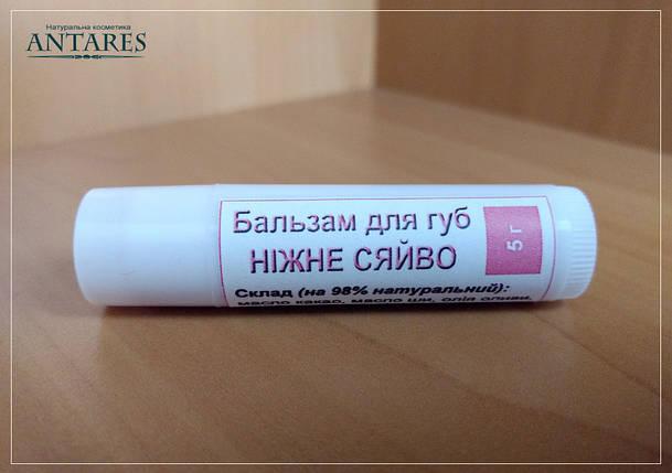Бальзам-блеск для губ, 5 г, фото 2